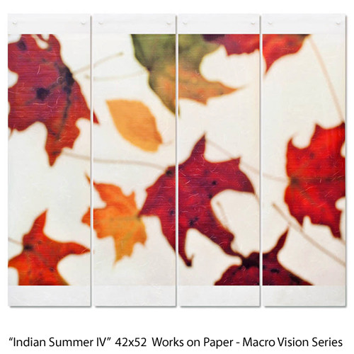Indian Summer IV  42x52