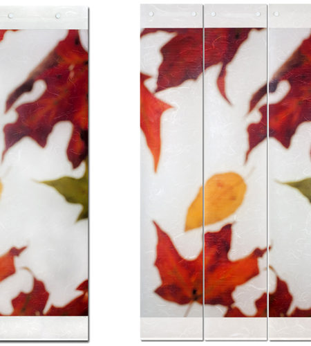 Indian Summer I and III  41L