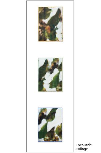 Swimming Upstream Triptych framed  36x13.5
